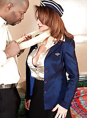 The Flight Attendant And The Passenger