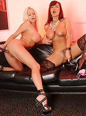 I love Lisa Ann, she has to have one of the hottest bodies out