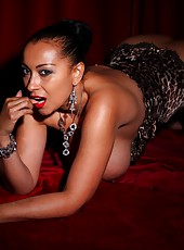 Danica in silk stockings and leopard print lingerie