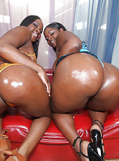 Two phat black whores getting a massive schlong up their bubble butts!