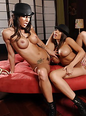 Threesome lesbian action with Gia Dimarco, Madison Ivy and Zoe Voss