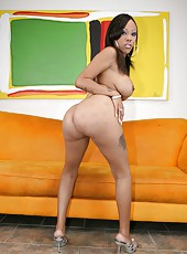 Gorgeous and busty ebony milf Lacey DuValle demonstrates her gentle holes