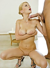 Elegant blonde babe Tammy spreads her sexy legs for a hardcore fuck