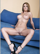 Unforgettable experience of a voluptuous babe Jodi Bean and her sweet looks