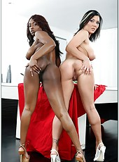 Fantastic milf sluts Claire Dames and Jada Fire having a hot threesome
