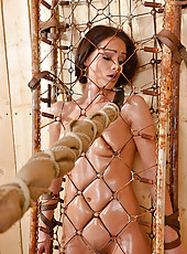 Sophie Lynx is Imprisoned & Probed