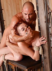 Bound Babe DP
