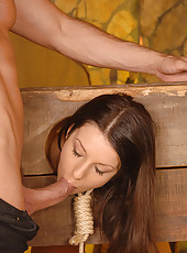 Babe locked in the sexual stocks!