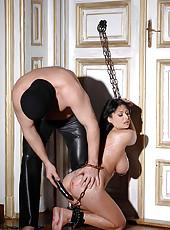 Hot busty babe Alison gets bound up