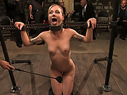 Amateur girl does crazy bondage gangbang where she is caned, flogged, and made to service multiple big black cocks while helplessly bound in metal sha