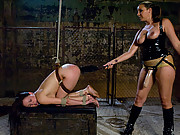 Sindee Jennings, super squirter, fucked with huge dildos in bondage.