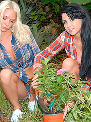 Amazing lesbo babes fuck eachother in these hot fucking pics after getting horny in the flower garden
