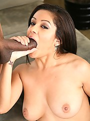 Latin Hottie Vanessa Leon Loves Black Cock Tearing Into Hot Pussy