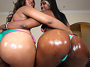 Two black whores with bubblelicious asses getting the cock injection!