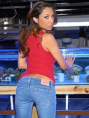 Smoking hot ass latina gets picked up at a pet store showing her pink undies then fucked hard and cumfaced in this reality fucking picset