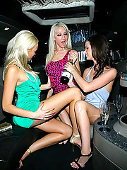 Hot long leg lesbians fuck their mini skirt pussies in these club limo 3some ass and pussy licking pics