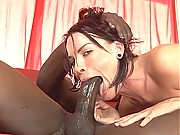 Huge Cock in Pussy