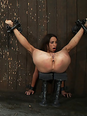 Jade Indica and Amber Rayne suffer though part 1 of the August Live show, both are double zippered and made to cum over and over with Sybians.