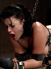 Gorgeous all natural Angelica Raven chained, collared, bound doggy-style and abused like a junkyard bitch.