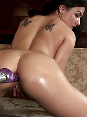 College girl machine fucked in the fancy lounge - she cums and squirts on the 19th century furniture while getting ass fucked!