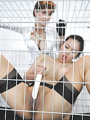 Tiger juggs caged by lady sonia