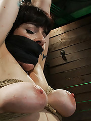 Welcome Annika back to Hogtied, it is not often that we get an actual member with huge tits on the site, so when we do it