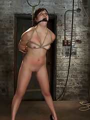18yr old is bound, gagged pushed to the dirty floor finger fucked until she cums & bound tighter.  Made to cum over & over. Left to suffer in bondage