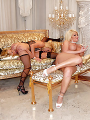Super hot steamy hot babe lesbians fucking check these hot fucking babe sex parties