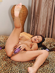 Pussy Toys