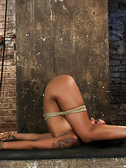 Skin Diamond is bound up in a sexy pile driver.  Her ass & pussy open & vulnerable.  We plug her ass & make her squirt, cum all over her own face.