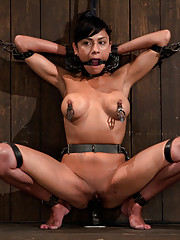 Perky tits, perfect ass. Beretta is made to cum with ass hook lifting her off her feet. She gets wrecked with the cattle prod. Made to fuck, made to c