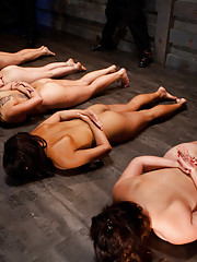 We start with five potential trainees and four handlers. The day is filled with heavy exercise, humiliation, pain testing and orgasm control.