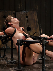 Felony is made to squirt, beaten, vibed, ass fucked, ass hooked. She is made to cum into a wet mess. Orgasmed into oblivion by the sybian.