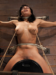 Cougar w/huge nipples stuck in a double bind: Nipples pull her one way, neck rope pulls the other. To breathe or suffer that is the question. Intense!