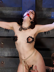Orgasm denial and sadistic torment push this slave into true submission