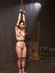 Sweaty Tia is belted tight. Her nipples suctioned and lactating. Taunt and teased by Isis Love. On her tippy toes and suffering for her orgasms.