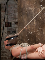 Rilynn is trained to suck cock right and then bound into a strict hogtie by only her ankles and pantyhose with vicious electrical tape over her head.