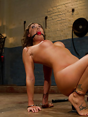 Sexy, all American, girl captured & tortured by Lorelei Lee. Suffers cattle prodding, zappers, & raw fucking until all muscles twitch uncontrollably.