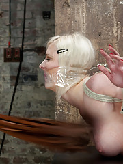 Cherry is bound in a classic hogtie, leaving her pussy exposed to Claire