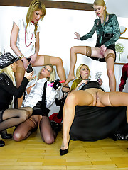 A big group of lesbian porn stars caressing
