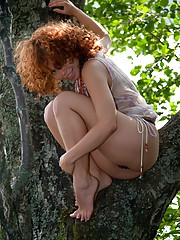 Pretty deranged redhead hanging out in a tree