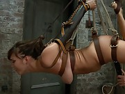 Bondage newbie and total hottie Holly Michaels gets suspended and face fucked into oblivion by James Deen.