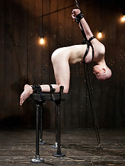 Alani Pi is strapped tightly kneeling and her arms bound strictly high behind her making her bend over. A nose hook is added and the fun begins.