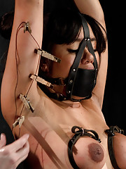 Kinky Annie Cruz returns to DB and gets worked over crammed into a metal cage, pile driver in metal, leather bondage, and a fucking machine!