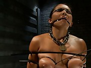Adrianna experiences restrictive bondage and mind blowing orgasms on Day 3.