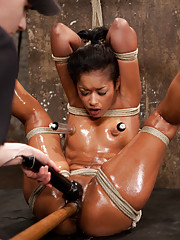 One of HogTied
