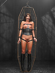 Cassandra Nix endures pleasures of the flesh in metal and cattle prod. Watch this cunt suffer intense leather suspensions, latex encasement, and pain.