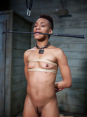 Sexy Nikki Darling is trained to endure cruel punishments at the hands of sadistic slave trainers