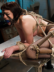 Lorelei Lee trains and programs local model to take lesbian bondage, punishment and fisting.