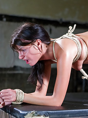 Gorgeous slave slut Cassandra Nix is trained to service the gimp